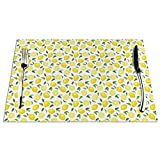 GULTMEE Placemats Heat-Resistant Stain Resistant Anti-Skid Washable PVC Table Mats,Lemons and Leaves Half Sliced Summer Juicy Fruit Art Illustration 1 PCS