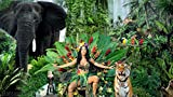 Ultimate Poster Katy Perry - Roar 30,5 x 45,7 cm
