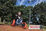 BERG Kettcar / Pedal-Gokart Buzzy Nitro - 2