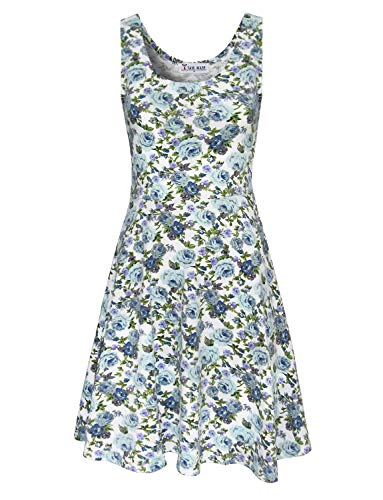 Tom's Ware Womens Casual Fit and Flare Floral Sleeveless Dress TWCWD054-WHITEBLUE-US XXL