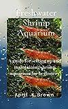 Freshwater Shrimp Aquarium: A guide for setting up...