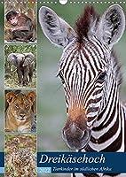 Dreikaesehoch - Tierkinder im suedlichen Afrika (Wandkalender 2022 DIN A3 hoch): Nachwuchs in den Nationalparks (Monatskalender, 14 Seiten )