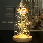 chris.w beauty and the beast rose enchanted rose with led string light in glass dome, artificial flower gifts for valentine's day mother's day women her girlfriend female wedding anniversary birthday