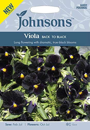 Johnsons Seeds Alto Back to Black Seed - 1