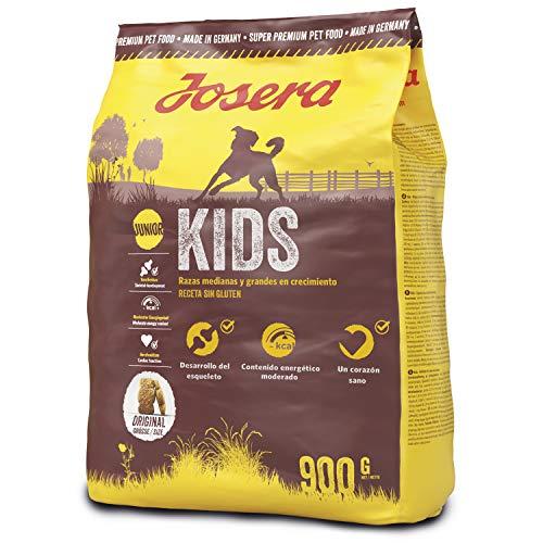 JOSERA Kids, Welpenfutter für mittlere und große Rassen, ohne Weizen, Super Premium Trockenfutter für wachsende Hunde, 5er Pack (5 x 900 g)