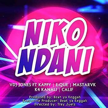 Niko Ndani