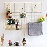 Gitter Foto,Wandgitter Regal der bestseller Fotowand Dekoration für Zimmer Clip Fotohalter...