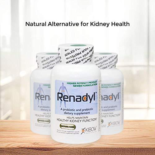Renadyl All-Natural Probiotic Supplement for Kidney Health, Kidney Support, Kidney Cleanse, Kidney Restore - Vegetarian…
