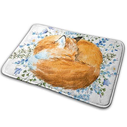 tianjinjinmingyumaoyi binnendeur mat aquarel slapende vos entryway tapijt welkom mat keuken tapijt met niet-slip rug 16 X 24 inch