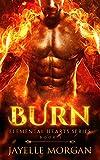 Burn (Elemental Hearts Series Book 1) (Kindle Edition)