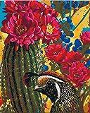 HGSWYUD Peinture au numéro DIY Peinture à l'huile pour Adultes et Enfants avec Pinceau 40 * 50cm -Concours de beauté sans Cadre
