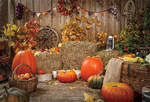 Allenjoy 5x7ft Autumn Rustic Barn Door Backdrop Harvest Thanksgiving Gifts Photography Background Lights Flowers Pumpkins Maple Leaves Decor Banner for Kids Birthday Party Photoshoot Booth Props
