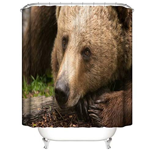 Wild Animals. Brown Bear. Shower Curtain. Bathroom Accessories. Waterproof. Contains 12 Hooks. Shower Curtain Rod Ring Hook. Background. Party. Living Room.