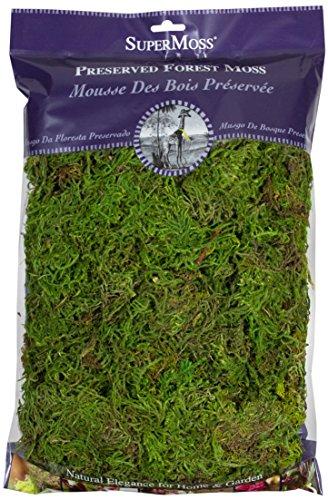 SuperMoss (25322) Forest Moss Preserved, Fresh Green, 8oz