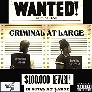 Criminal at Large (feat. Supa Nea)