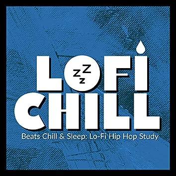 Beats Chill & Sleep: Lo-Fi Hip-Hop Study