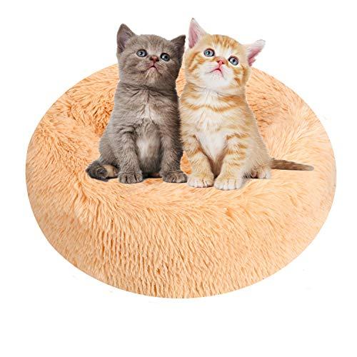Cama para gatos, cama de lujo para mascotas, para gatos y perros pequeños y medianos, fácil de limpiar, cama de 50 cm para mascotas en forma de Doughnut, para gatos (champán)
