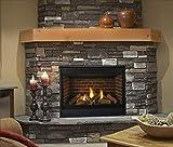 Best Napoleon Direct Vent Gas Fireplaces - Majestic Quartz Series Direct Vent Gas Fireplace Review