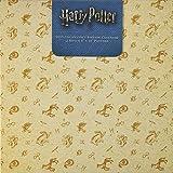 2019 Harry Potter Collector's Edition Wall Calendar