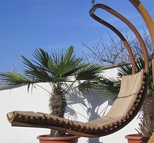 ASS DESIGN Hängeliege NAVASSA-SEAT aus Holz Lärche/Metall mit Auflage (OHNE Gestell) von Farbe:Braun - 2