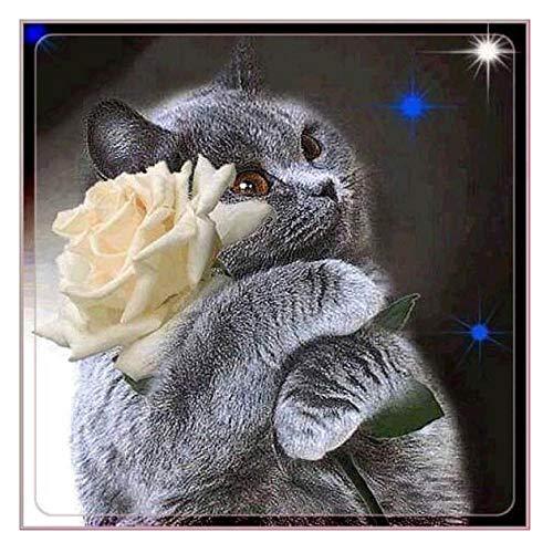 MOL 5D DIY diamantschilderij dier kat decoratie voor huis kit kruis Ctitch rond perforatie compleet borduurwerk kunst cadeau 50x50cm