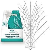 Wendowerk ® [3 Meter] Taubenabwehr - Effektive [5-Reihige] Vogelabwehr aus Edelstahl mit Sollbruchleisten - Taubenabwehr Spikes für Balkon, Fenster und Dach