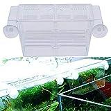 Ogquaton Acuario Cría Aislamiento Caja de los cultivadores de Peces Brüterei Cría criadores cría Trampa Box Duradero y útil