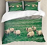 <span class='highlight'><span class='highlight'>JamirtyRoy1</span></span> Farm Animal Duvet Cover Set Double Size, Husbandry Themed Photo with Sheep Grazing on Grass in Iceland Nature, Decorative 3 Piece Bedding Set with 2 Pillow Shams, Ecru and Fern Green