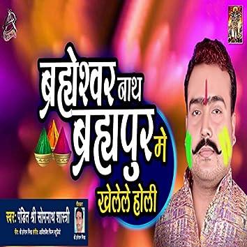 Brahmeshwarnath Brahmapur Me Khelele Holi - Single