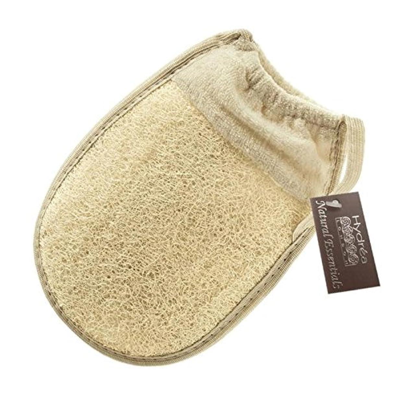 わかるジャムファイアルHydrea London Egyptian Loofah Glove with Elasticated Cuff - 伸縮性カフとハイドレアロンドンエジプトのヘチマグローブ [並行輸入品]
