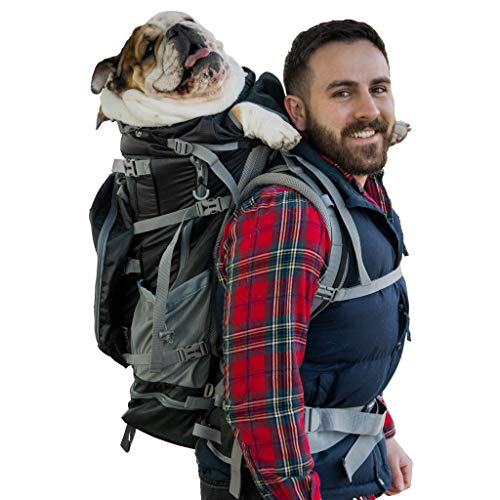 K9 Sport Sack | Rover 2 Dog Carrier Backpack for Small and Medium Pets | Front Facing Adjustable Dog Backpack Carrier | Fully Ventilated | Veterinarian Approved (Large, Rover 2 - Black)