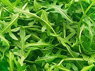 Perennial Wall Rocket seeds - Diplotaxis tenuifolia