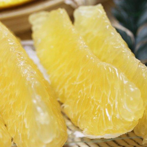 「お得最上ナダオレ5」お得用最上級ナダオレンジ5kg皮むき簡単食べ易い冷やして食べるとひんやりジューシー(河内晩柑,かわちばんかん) フルーツ 果物 通販 農家大岩さん