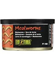 Askoll 281760 MEALWORMS 34G