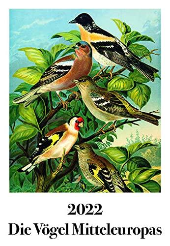Johann Friedrich Naumann – Die Vögel Mitteleuropas: Wandkalender 2022