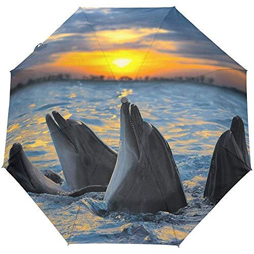 Cute Dolphins Windproof Travel Umbrella Auto Open Close Plegable Compacto Portátil Ligero...