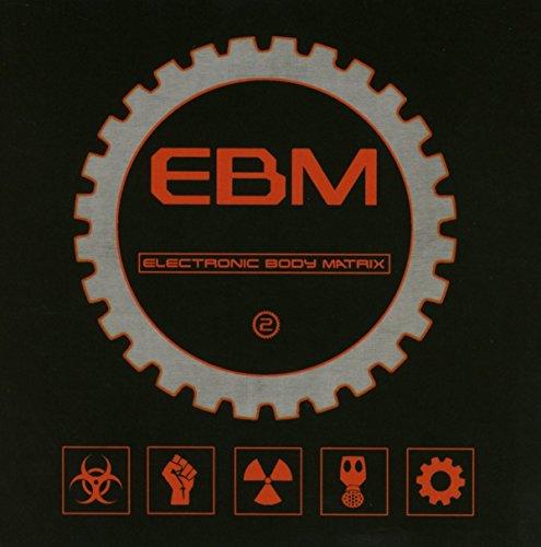 Electronic Body Matrix 2