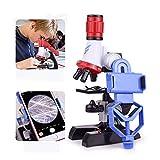 Mikroskop Kit Lab mit Telefon-Halter LED wissenschaftliches Schul pädagogisches Spielzeug-Geschenk Raffiniertes biologisches Mikroskop für Kinder Geschenke