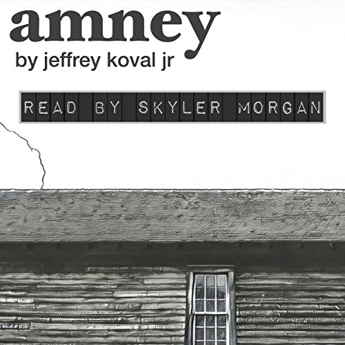 Amney audiobook cover art