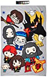 Official Harry Potter Charm Fleece Blanket Throw Character Design Super Soft Blanket Perfect for Any Bedroom 59' x 39'
