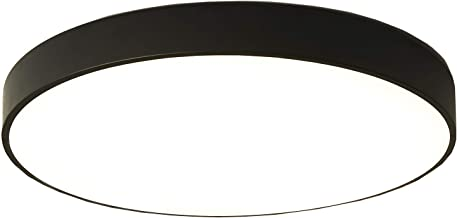 Ganeed LED Ceiling Lights, Modern Ceiling Lamp,24W 12-Inch Round Flush Mount Lighting Fixture,Kitchen Light Fixture,Ceilin...