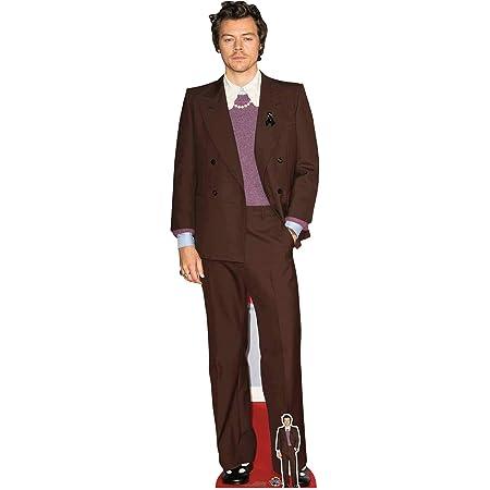 Star Cutouts Ltd CS836 Harry Singer Songwriter - Cortador de cartón con Minifalda Gratis, cumpleaños, Regalos, Fiestas y Aficionados, Multicolor, Regular