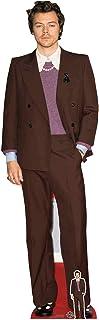 Star Cutouts Ltd Figura de cartón de Harry Styles CS836 con Mini Soporte, cumpleaños, Regalos, Fiestas y fanáticos, Multic...