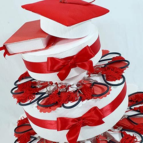 Torta BOMBONIERE Laurea stetoscopio Medicina Infermieristica (Torta da 35 fette)