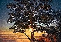スコッツブラフナショナルモヌ500ピースジグソーパズル20.6X15.1木材素材独自のカスタマイズ写真