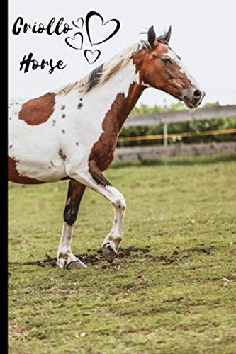 Criollo Horse Notebook For Horse Lovers: Composition Notebook 6x9' Blank Lined Journal