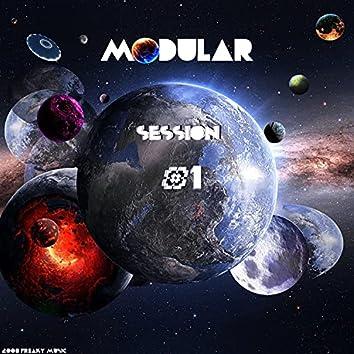 Modular Session, No. 1
