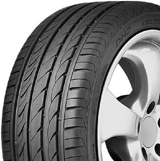 Delinte DH2 All-Season Radial Tire - 245/40-17 95W