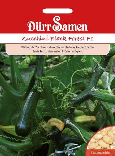 Dürr Samen 1019 Zucchini Black Forest F1 (Zucchinisamen)