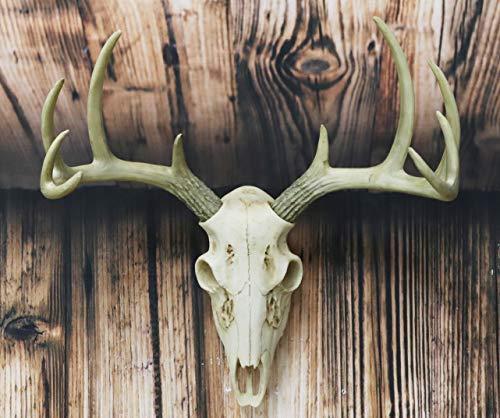 Ebros Gift 素朴なハンター鹿 10ポイント バックスカル トロフィー 角 壁掛け 飾り額 トロフィー 装飾 置物 長さ14.25インチ ハンターの角 ラック テーマ 鹿 狩猟 スカル トロフィー ハンギング彫刻